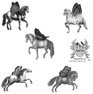horse photoshop brushes